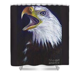 Bald Eagle - Francis -audubon Shower Curtain