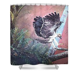 Shower Curtain featuring the painting Eagle Light by Mary Ellen Anderson