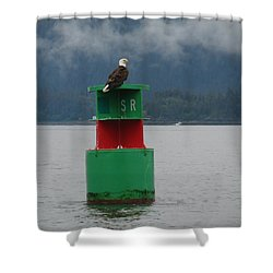 Eagle On Bouy Shower Curtain