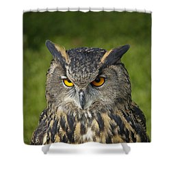 Shower Curtain featuring the photograph Eagle Owl by Clare Bambers