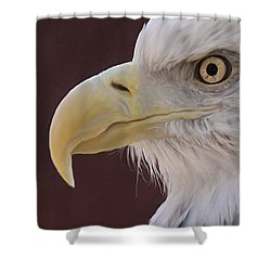 Eagle Portrait Freehand Shower Curtain