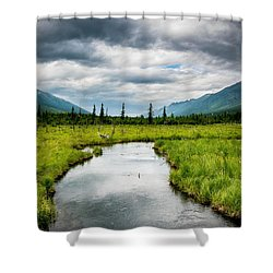 Eagle River Nature Center Shower Curtain by Andrew Matwijec