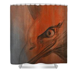 Eagle Spirit 4 Shower Curtain