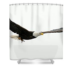 Eagle With Fish Shower Curtain