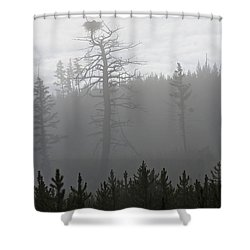 Eagle's Nest In Fog Shower Curtain