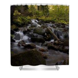 Shower Curtain featuring the photograph Early Autumn Cascades by Ellen Heaverlo