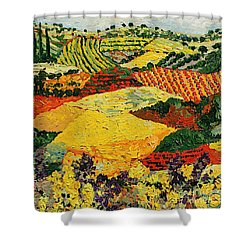 Early Clouds Shower Curtain by Allan P Friedlander