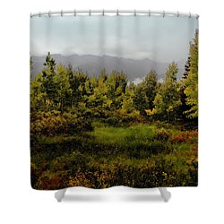Shower Curtain featuring the photograph Early Fall On Kebler Pass by Ellen Heaverlo