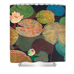 Early Mist Shower Curtain by Allan P Friedlander