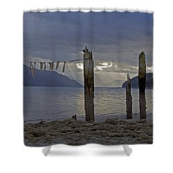 Early Morning Shower Curtain by Cathy Mahnke