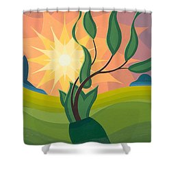 Early Morning Shower Curtain by Emil Parrag