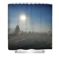 Early Morning Fog At Canaan Valley Shower Curtain by Dan Friend