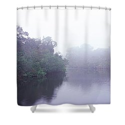 Early Morning Fog On A Creek, South Shower Curtain by Panoramic Images