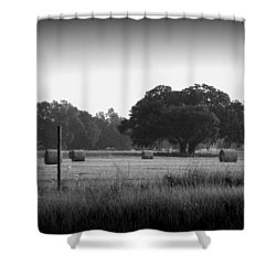 Early Morning Hay Field 1 Shower Curtain