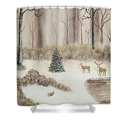 Early Morning Snow Shower Curtain