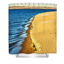 Early Morning Walk Shower Curtain by Bill Kesler