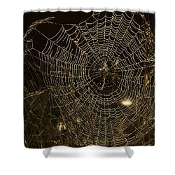 Early Riser Shower Curtain