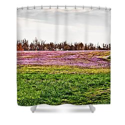 Shower Curtain featuring the photograph Early Spring Field by Greg Jackson