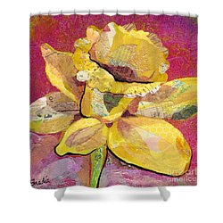 Early Spring IIi  Daffodil Series Shower Curtain