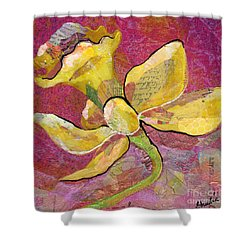 Early Spring Iv Daffodil Series Shower Curtain