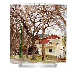 Early Spring Street Shower Curtain by Donald S Hall