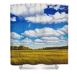 Early Summer Clouds Shower Curtain by Leonard Heid