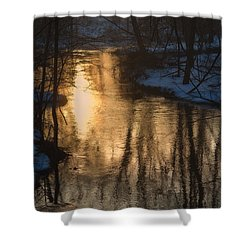 Early Winter Morning Shower Curtain by Karol Livote