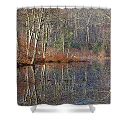 Early Winter Reflects Shower Curtain by Karol Livote