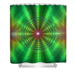 Shower Curtain featuring the drawing Earth Grid Six by Derek Gedney