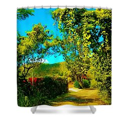 East End St. John's Usvi Shower Curtain