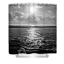 East Shower Curtain by M West