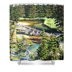 East Rosebud Inlet Stream Shower Curtain