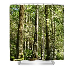 East Sooke Park Trail Shower Curtain