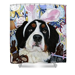 Easter Berner Bunny Duties Shower Curtain by Liane Weyers