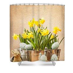 Easter Setting Shower Curtain by Amanda Elwell