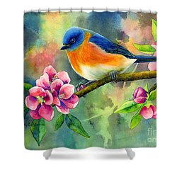 Eastern Bluebird Shower Curtain