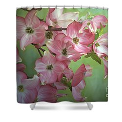 Eastern Dogwood I Shower Curtain