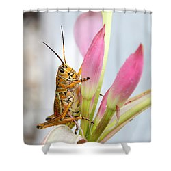 Eastern Lubber Shower Curtain