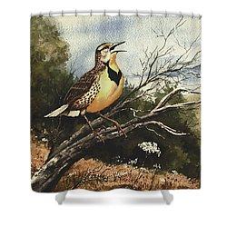 Eastern Meadowlark Shower Curtain