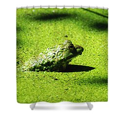 Easy Being Green Shower Curtain by Rebecca Sherman