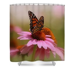 Easy Landing Shower Curtain by Kay Novy