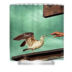 Easy Prey Shower Curtain