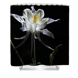 Ebony And Ivory Shower Curtain by Donna Kennedy