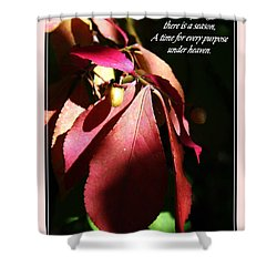 Ecclesiastes 3 Verse 1 Shower Curtain
