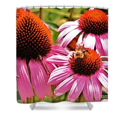 Shower Curtain featuring the photograph Ech 2 by Robin Coaker