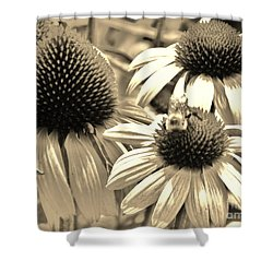 Shower Curtain featuring the photograph ech by Robin Coaker
