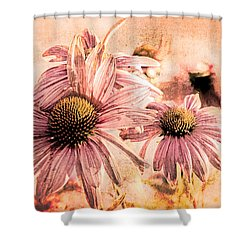 Echinacea Impressions  Shower Curtain by Bob Orsillo