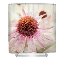Echinacea Shower Curtain by Priska Wettstein