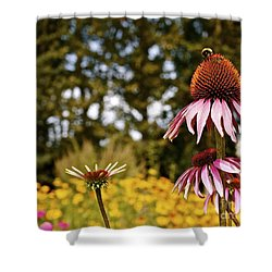 Echinacea With Bee Shower Curtain by Linda Bianic
