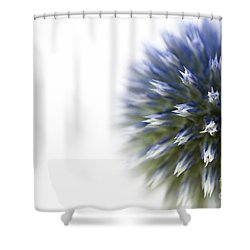 Echinops  Shower Curtain by Anne Gilbert